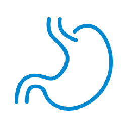 good gut bacteria balance icon